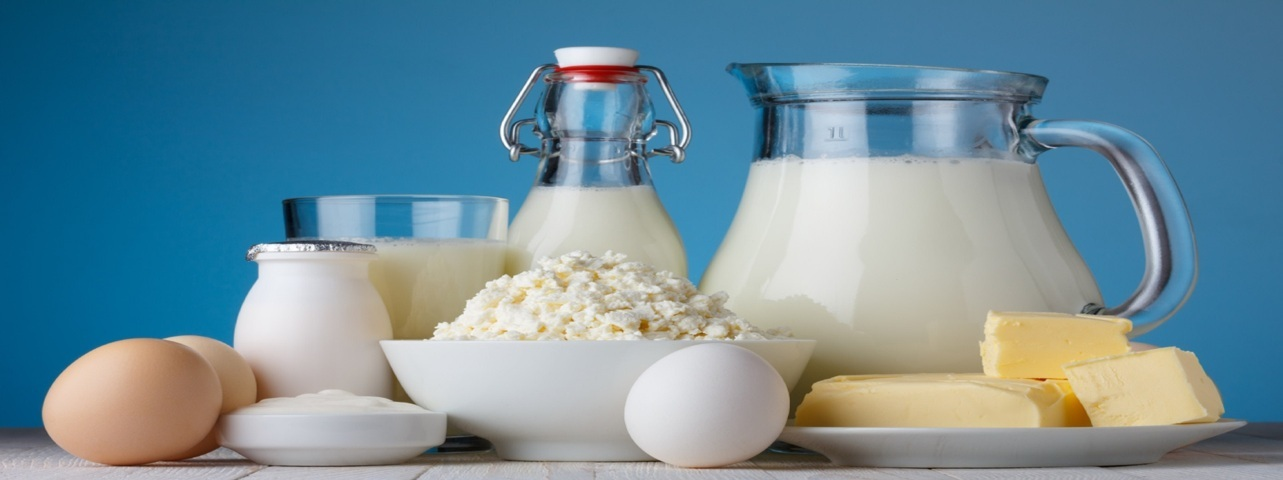 EDI for Dairy Products INDUSTRY