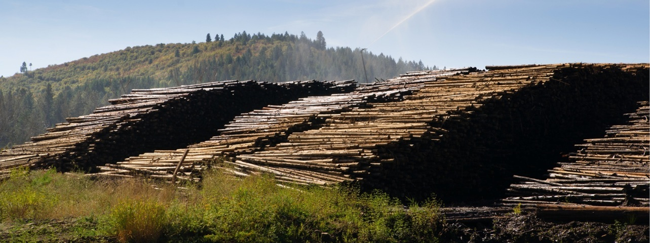 EDI for Forestry and Logging INDUSTRY