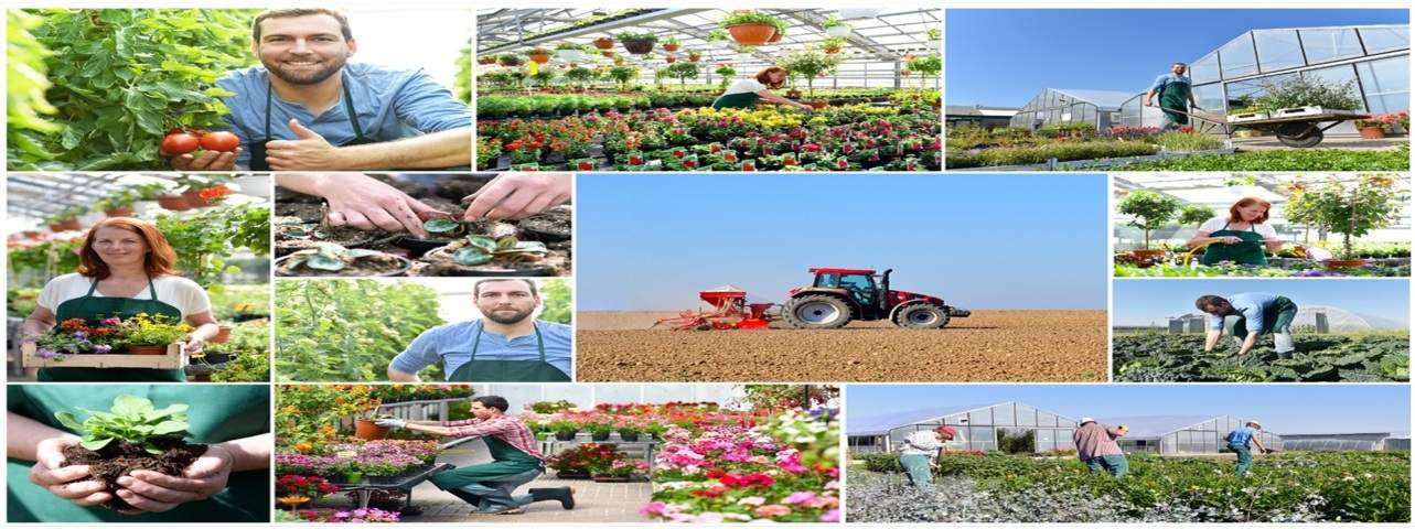 EDI for Nursery and Growers INDUSTRY